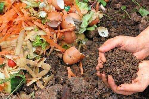 5 måter å lage naturlig kompost til plantene dine på