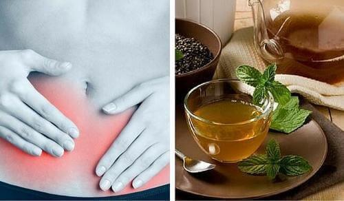 Boldo-te for å bekjempe urinveisinfeksjoner