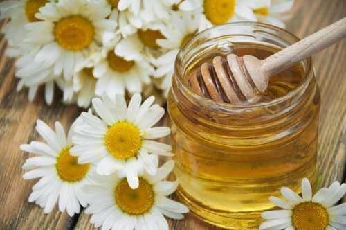 Kamille og honning