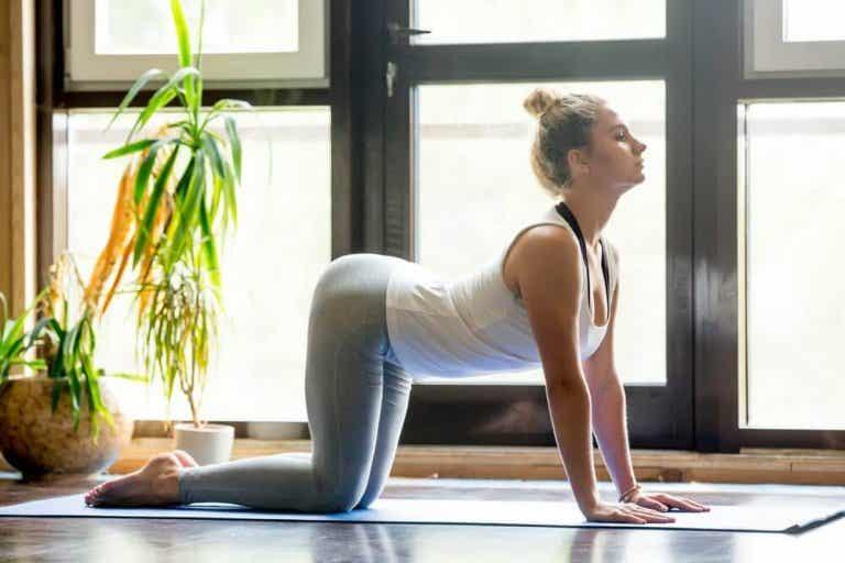 Yoga for å lindre ryggsmerter