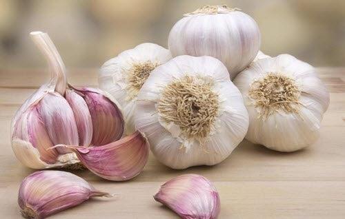 5 naturlige behandlinger for symptomer ved blastomykose.