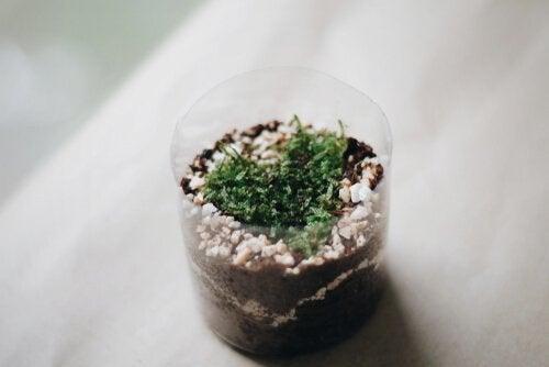 4 fremgangsmåter for å lage en potte av en plastflaske