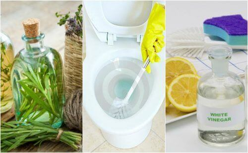 5 miljøvennlige desinfeksjonsmidler for badet