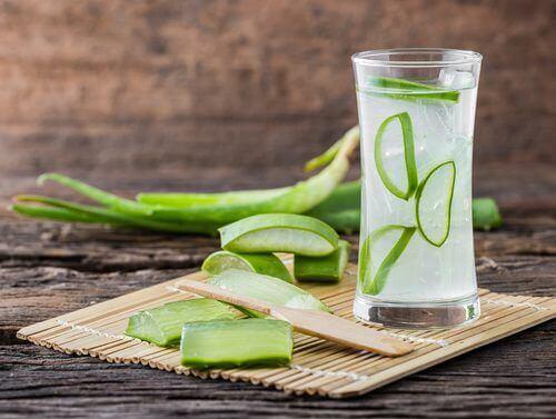 Aloe vera for å lindre halsbrann