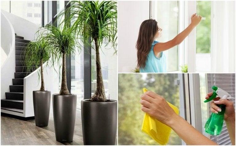 6 ting du kan gjøre for å forbedre luftkvaliteten i hjemmet ditt