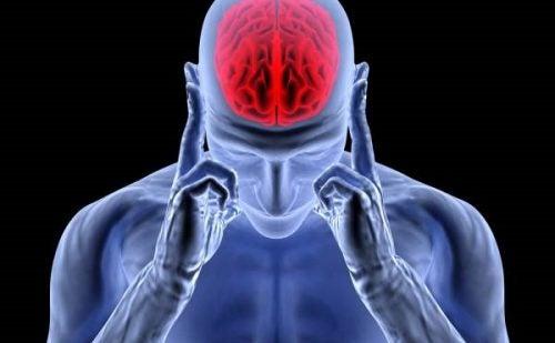 Frigjøring av adrenalin: Aktiverings-, stress- og hodepinehormonet
