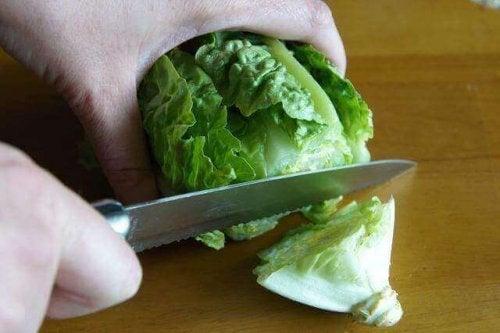 kutte-salat