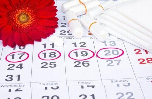 menskalender