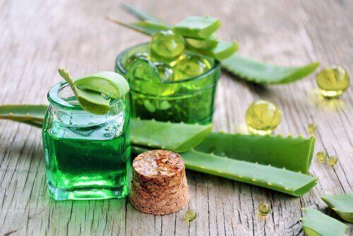 Aloe vera for silkeaktig hår