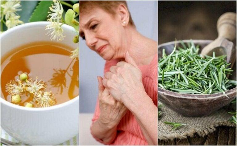 5 urtepreparater for å behandle leddbetennelse naturlig