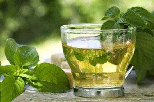 Grønn te med mynte