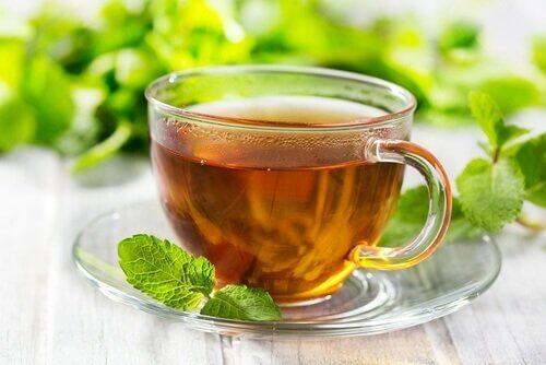 Nyt egenskapene til mynte i form av en te.