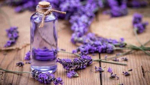 Lavendel er bra for mye.