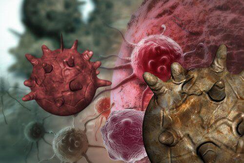 Myter om kreftfremkallende komponenter i mat