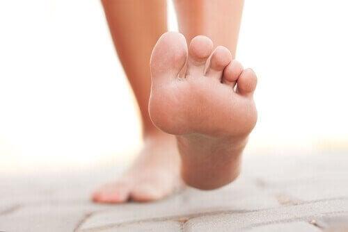 sålen av en fot