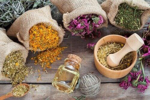 Aromatiske urter