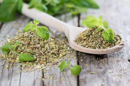 frukt og urter for å berolige fordøyelsen: oregano