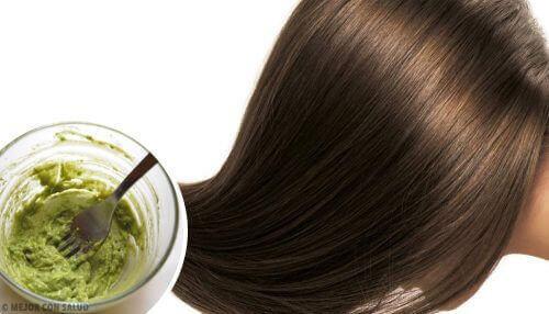 Lag en naturlig hårmaske: Disse er best for å pleie håret