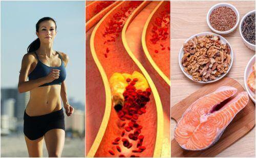 6 vaner for å kontrollere kolesterolet naturlig