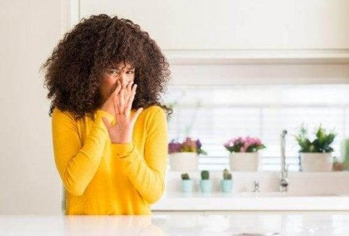 Lær å lage fire naturlige luftfriskere til kjøkkenet ditt
