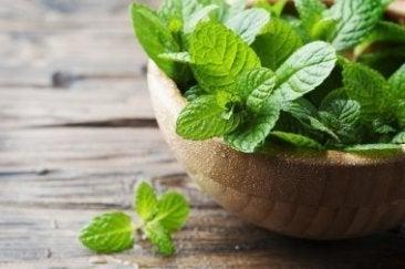 Prøv et av disse myntepreparatene mot dårlig ånde