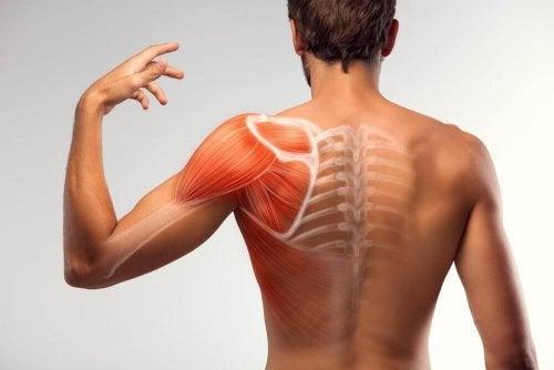 7 hjemmebehandlinger for å redusere muskelspasmer