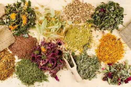 Medisinske urter som bidrar til å lindre magesmerter