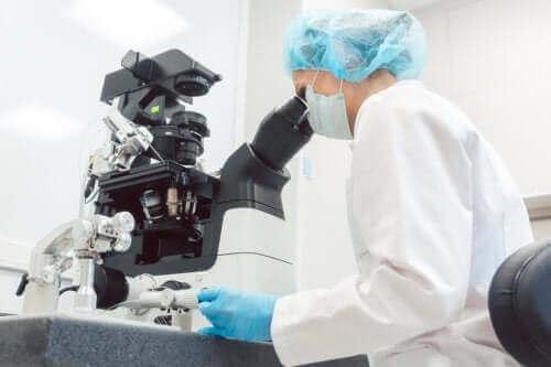 Preimplantasjonsdiagnostikk og assistert befruktning