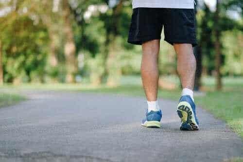 Åtte grunner til at det er anbefalt å gå seg en tur