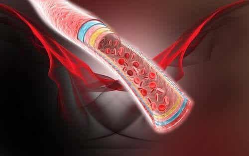 Fire naturlige midler for bedre blodsirkulasjon