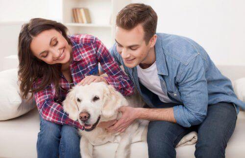 Når kjæledyr går bort: Hund og familie