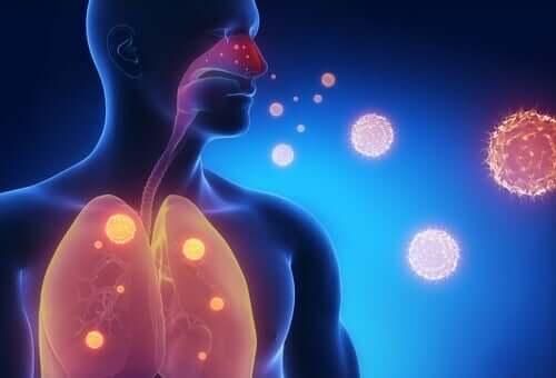 Tre infusjoner for å lindre influensasymptomer