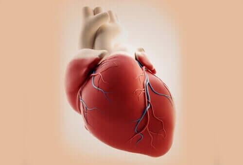 Hva er årsakene til hjertefeil i arteriestammen?