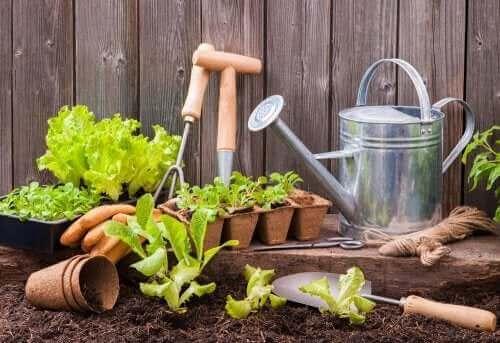 Utstyr til en urban hage.