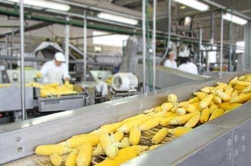 Hvilken påvirkning har matprosessering på næringsverdien i maten vår?