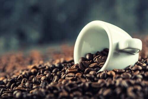 En hvit kopp i en haug av kaffebønner