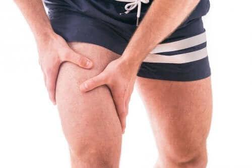 Person holder quadricepsmuskelen