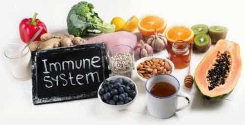 Et svekket immunforsvar: Dette bør du se etter