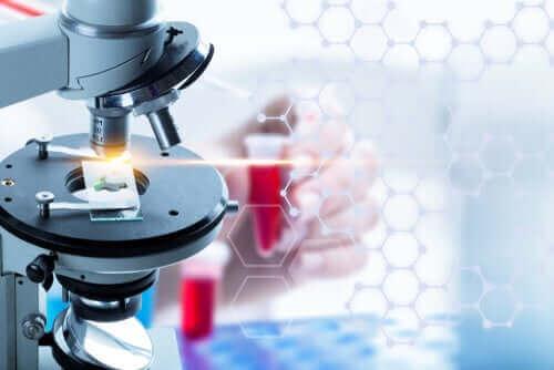 Hva er en flytende biopsi?