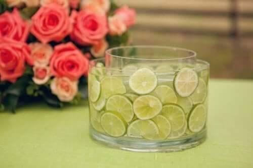 Limeskiver i en vase