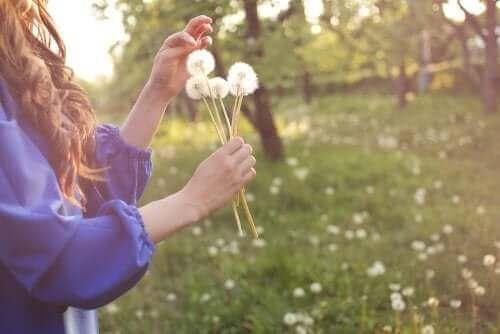 Årsaken bak allergiske reaksjoner og noen symptomer på allergi