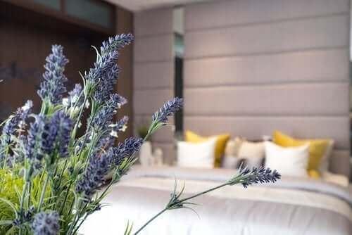 10 viktige nøkler til en god søvnhygiene