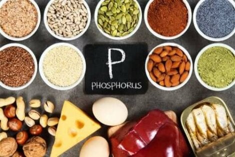 fosfat i kroppen