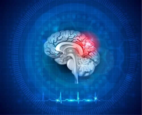 Illustrasjon av en hjerne.