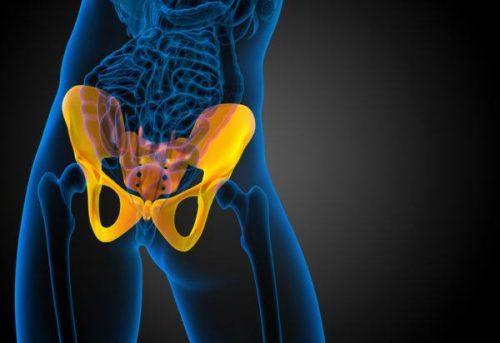 Illustrasjon av en hofte.