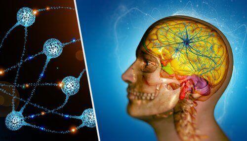 Illustrasjon kreftspredning til hjernen.