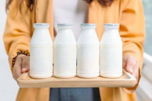 Hva er best: Melkeprodukter med mye eller lite fett?