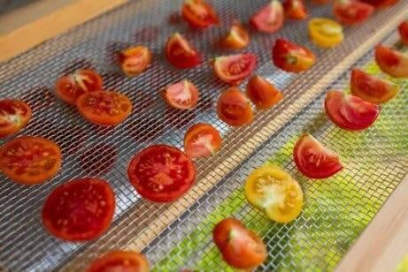 Hvordan kan du lage din egen soltørker for mat?