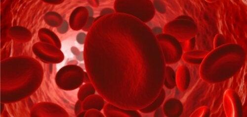 Råd for å opprettholde god blodsirkulasjon