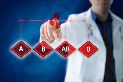 5 grunner til at det er viktig å vite blodtypen til familien din